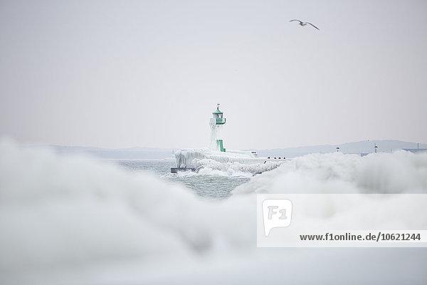 Deutschland  Mecklenburg-Vorpommern  Rügen  Sassnitz  Hafen mit Leuchtturm im Winter