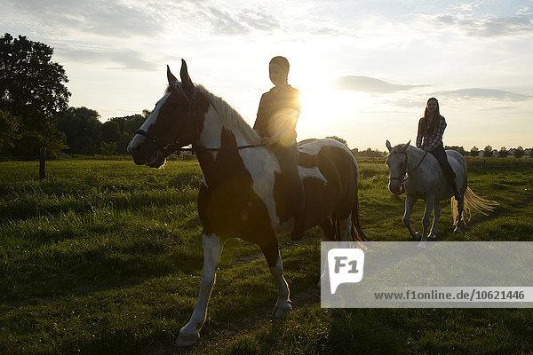 Junge Frauen auf dem Feld bei Sonnenuntergang