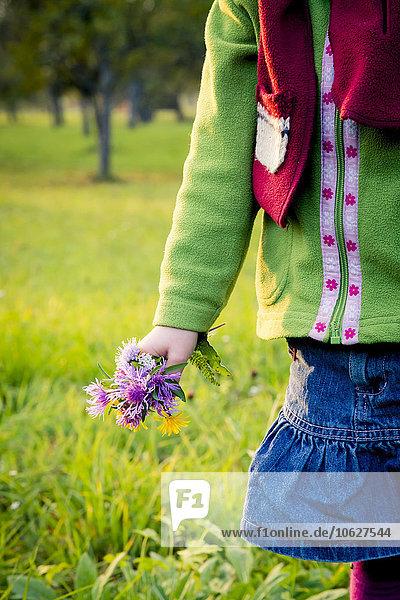Deutschland  Baden-Württemberg  kleines Mädchen mit gepflückten Blumen auf einer Wiese  Nahaufnahme