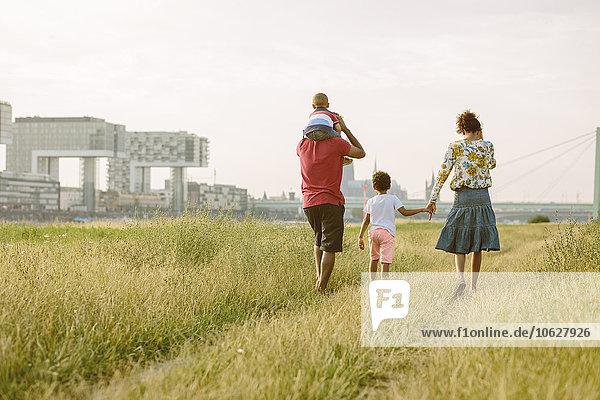 Deutschland  Köln  vierköpfige Familie auf dem Feld