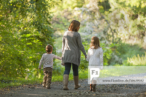 Rückansicht der Mutter  die mit ihren Kindern auf einem Waldweg spazieren geht.
