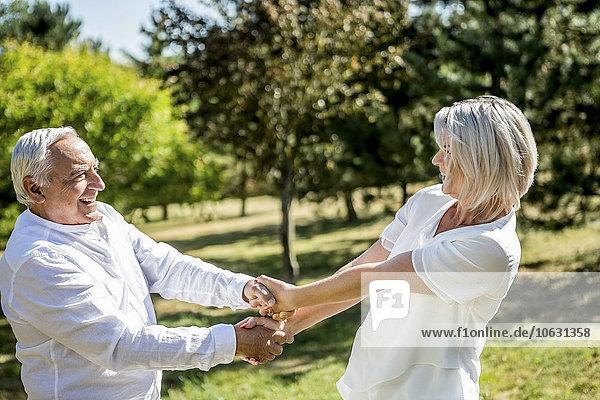 Happy elderly couple on a meadow