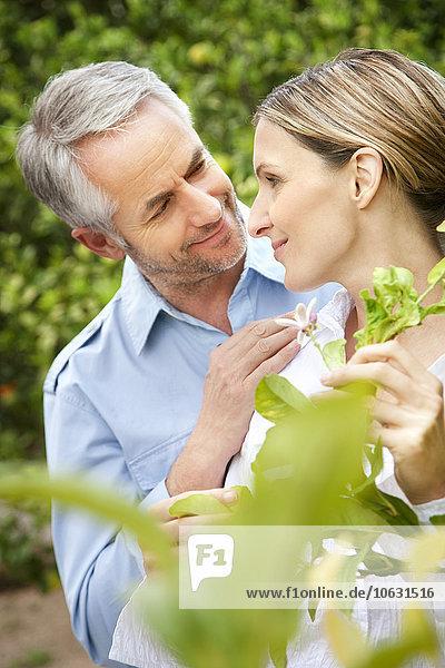 Portrait des glücklichen Paares von Angesicht zu Angesicht im Garten Portrait des glücklichen Paares von Angesicht zu Angesicht im Garten