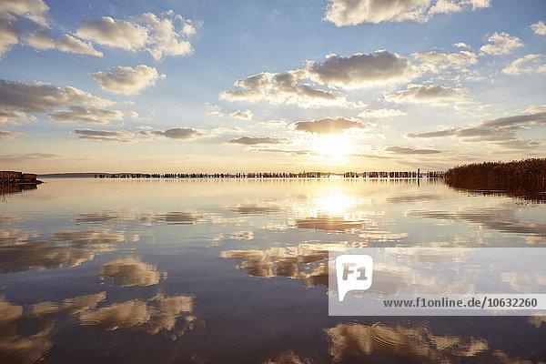 Deutschland  Mecklenburg-Vorpommern  Rügen  Glowe  Spyckerscher See bei Sonnenuntergang