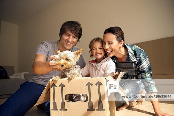 Glückliche Familie mit Hund im Karton