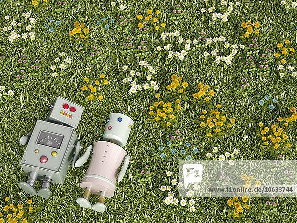 Männlicher und weiblicher Roboter auf Blumenwiese liegend  3D-Rendering