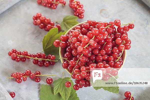 Schale mit roten Johannisbeeren und Blättern
