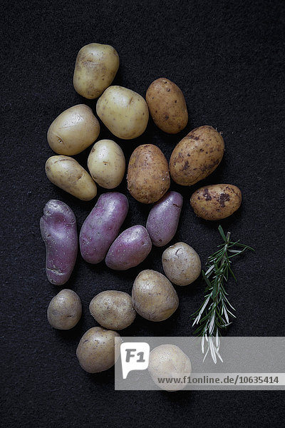 Various potatoes and rosemary