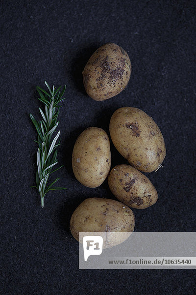 Directly above shot of potatoes and rosemary