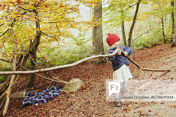 Girl carrying tree in forest