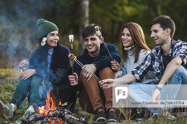 Lächelnde Freunde beim Marshmallowsbraten im Wald