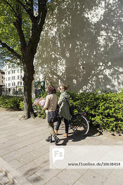Freundschaft gehen Weg Rückansicht Ansicht Fahrrad Rad