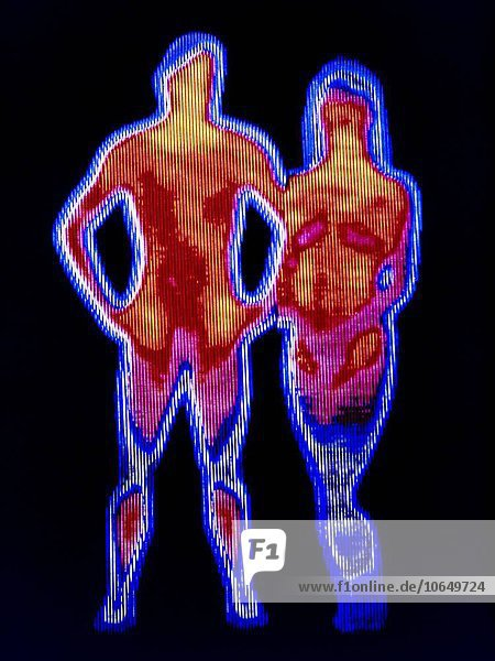 Couple. Thermogram of a naked man and woman. The colours show variation in temperature. The scale runs from white (warmest) through red  yellow  green and blue to purple (coldest).