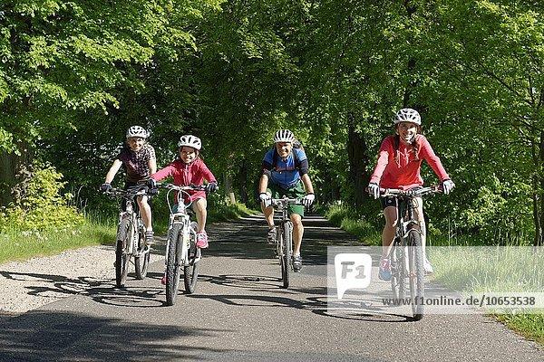 Familie mit Kindern beim Fahrrad fahren  Fahrradtour in einer Allee bei Qualzow  Müritz Nationalpark  Mecklenburgische Seenplatte  Mecklenburger Seenplatte  Mecklenburg-Vorpommern  Deutschland  Europa