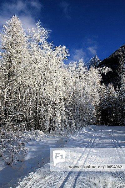 Winter landscape  Les Drus  Chamonix  Alps  France.