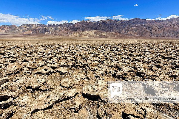 Death Valley National Park  Devils Golf course  North America  USA  South-West  California