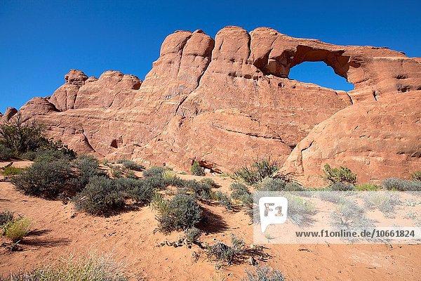 Vereinigte Staaten von Amerika USA Arches Nationalpark Utah