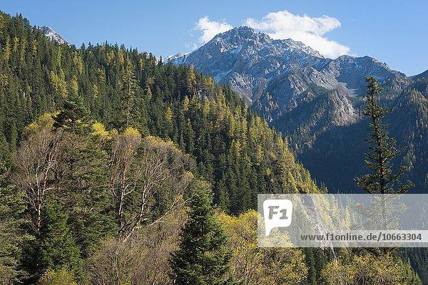 Gebirgslandschaft  Jiuzhaigou-Nationalpark  Provinz Sichuan  China  Asien