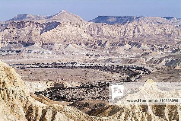 Wüste Zin  Steinwüste  Teil der Wüste Negev  Oberlauf des Nahal Zin  bei Kibbuz Sde Boker  Israel  Asien
