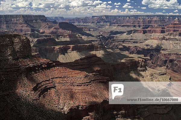Ausblick vom Moran Point  Grand-Canyon-Nationalpark  Arizona  USA  South Rim  Arizona  USA  Nordamerika