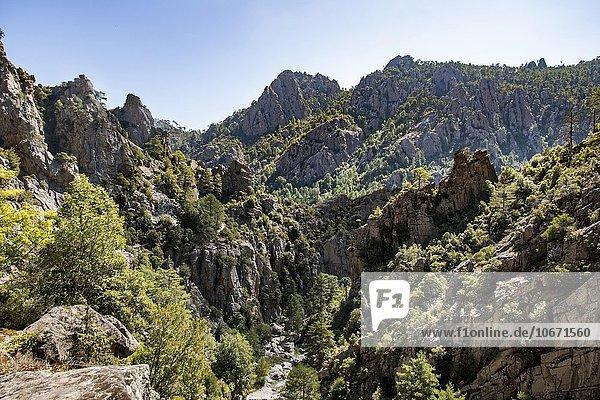 Flusstal des Tavignano  Felslandschaft  Corte  Département Haute-Corse  Korsika  Frankreich  Europa