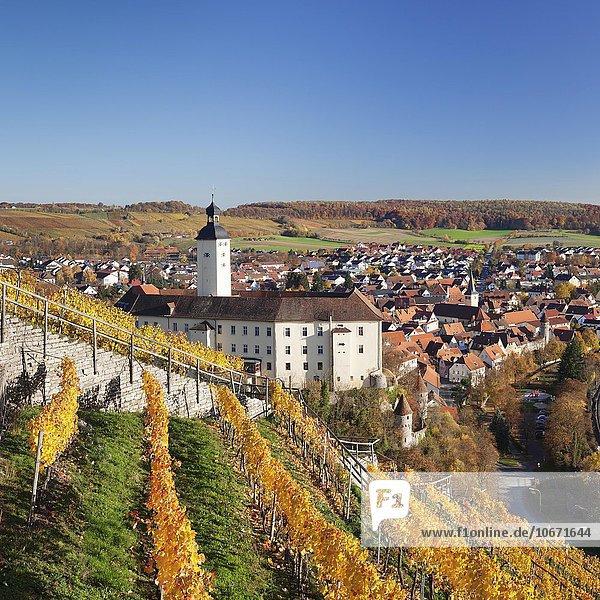 Schloss Horneck  Gundelsheim  Baden Württemberg  Deutschland  Europa