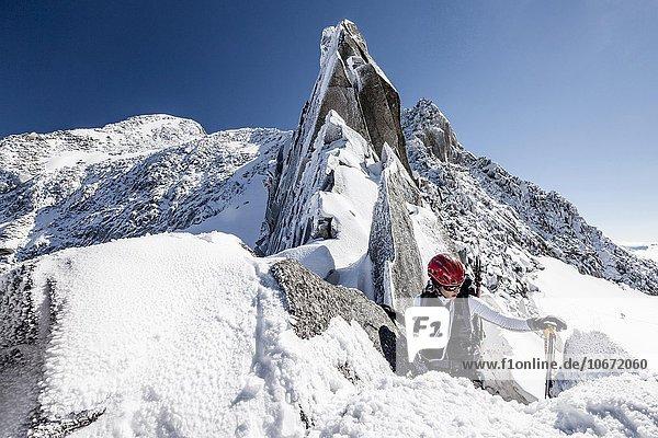 Bergsteiger in der Trippachscharte  hinten der Löffler  Zillertaler Alpen  Tauferer Ahrntal  Pustertal  Alpen  Südtirol  Trentino-Südtirol  Italien  Europa
