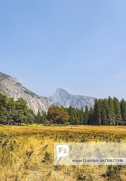 Yosemite Valley im Herbst  hinten Half Dome  Yosemite-Nationalpark  UNESO Weltnaturerbe  Kalifornien  USA  Nordamerika