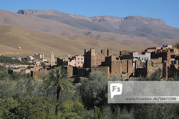 Alte Kasbah im Dades Tal  Hoher Atlas  Souss-Massa-Draâ  Marokko  Afrika