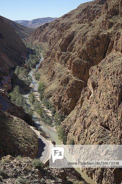 Dadesschlucht  Hoher Atlas  Souss-Massa-Draâ  Marokko  Afrika