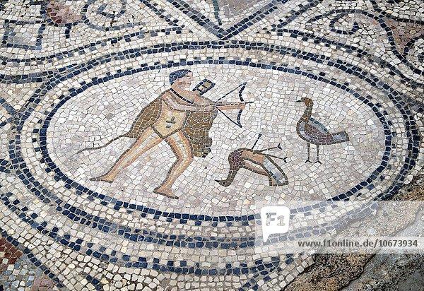 Fußbodenmosaik,  Herakles tötet die Stymphalischen Vögel,  Volubilis,  Ausgrabungsstätte UNESCO Welterbe,  bei Meknès,  Meknès-Tafilalet,  Marokko,  Afrika
