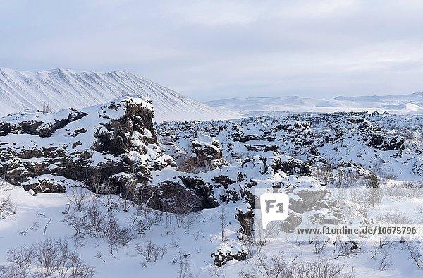 nahe Europa Winter See Lava Feld Myvatn Dimmuborgir tief Februar Island Nordeuropa Schnee