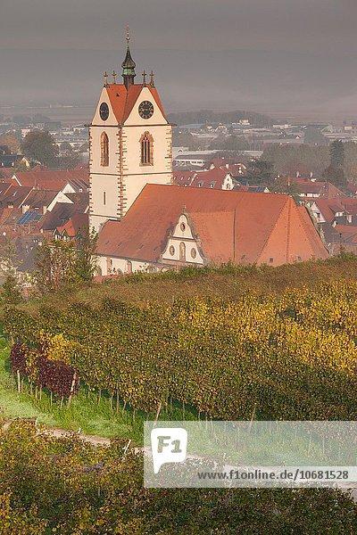 Morgendämmerung Nebel Kirche Herbst Ansicht Erhöhte Ansicht Aufsicht Weinberg heben Endingen Deutschland