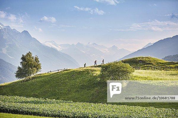 Eine Frau und zwei Männer laufen über eine Hügellandschaft  Rosengarten  hinten Stubaier Alpen  Tirol  Österreich  Europa