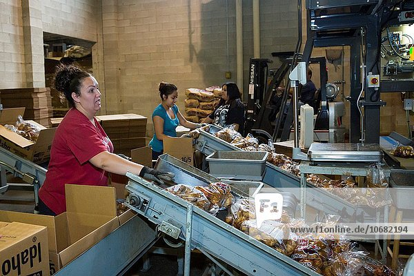 arbeiten, Kartoffel, sortieren, Aufbereitungsanlage, Idaho, Paket