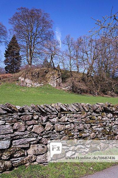 Steinmauer Cumbria England Grasmere Lake District