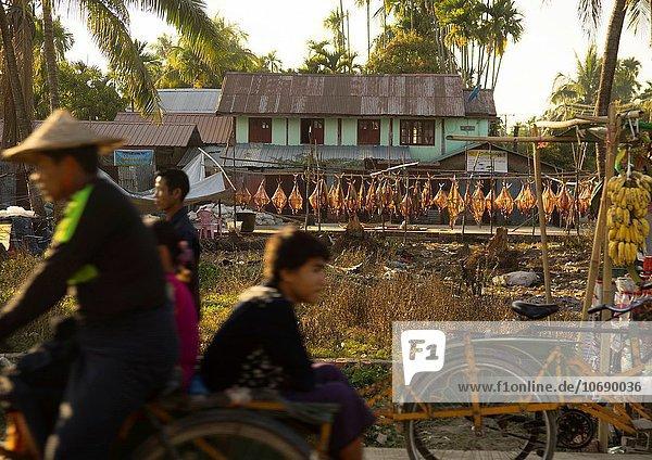 Fisch Pisces fangen trocken abhängen Myanmar