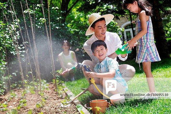 Fröhlichkeit Gemüse Garten