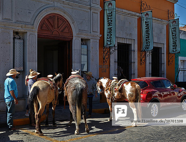 'America; Mexico; Jalisco state; Tequila city; Preparing for a horse riding'