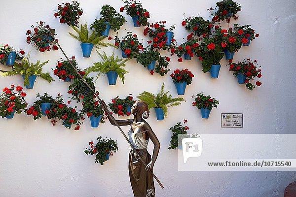 Straße Kunst Andalusien Spanien