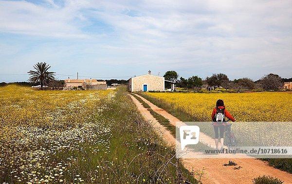 Weg Leuchtturm Balearen Balearische Inseln Formentera Spanien