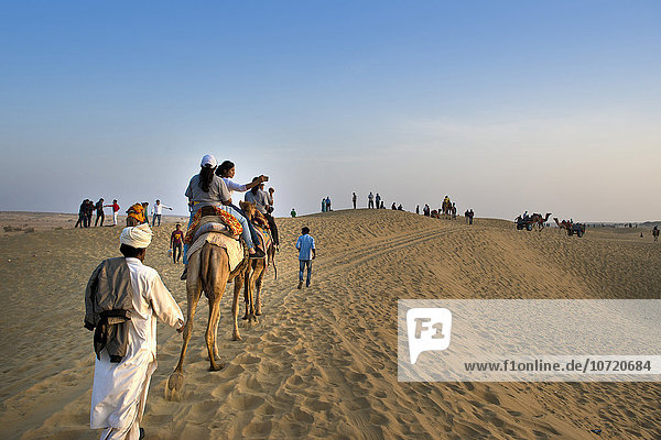 India  Rajasthan  Jaisalmer  camel ride desert
