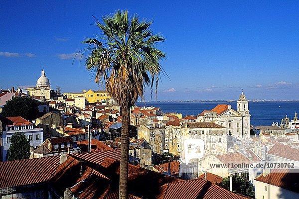 Lissabon Hauptstadt Südeuropa Draufsicht Alfama Ortsteil Portugal