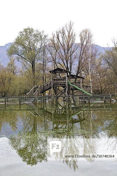 Switzerland  Magadino  alluvion