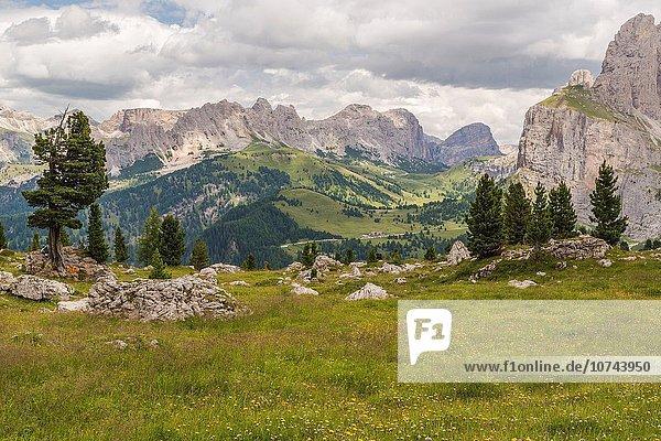 gehen über Tal Fernverkehrsstraße Ansicht Dolomiten Italien