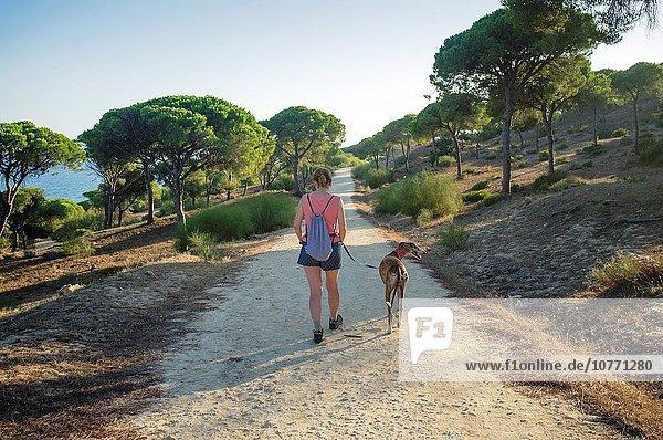 zwischen inmitten mitten Frau Landschaft Stein Weg Wald wandern Kiefer Pinus sylvestris Kiefern Föhren Pinie Windhund Andalusien Spanien