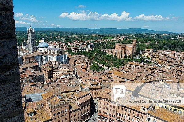 Großstadt Turm Kathedrale Ansicht bauen Siena Toskana