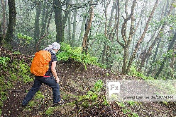 Ländliches Motiv ländliche Motive Wald wandern Kanaren Kanarische Inseln