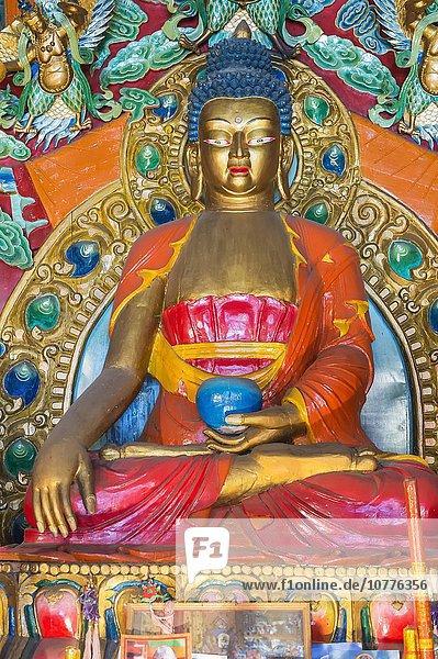 Statue inside a Buddhist temple  Shuzheng Tibetan village  Jiuzhaigou National Park  Unesco World Heritage Site  Sichuan Province  China  Asia