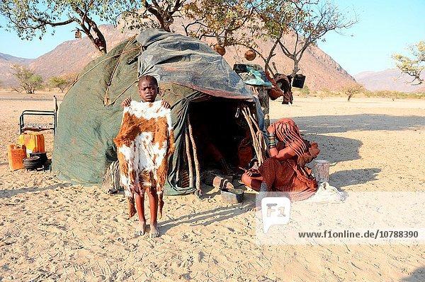 Hütte Ziege Capra aegagrus hircus Produktion Rock frontal Namibia Mädchen neu gebräunt braun